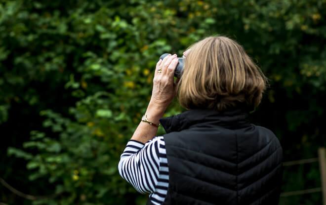 community-group-activities-bird-watching