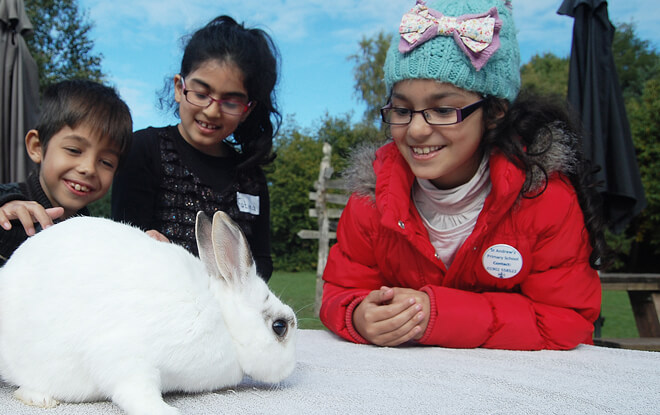 learning-outside-the-classroom-white-rabbit