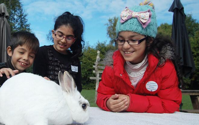 outdoor-education-activities-white-rabbit